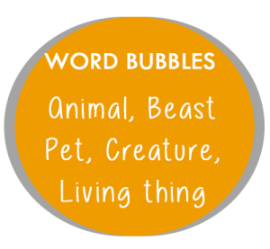 Word-Bubble