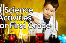 4-Science-Activities-for-First-Grade