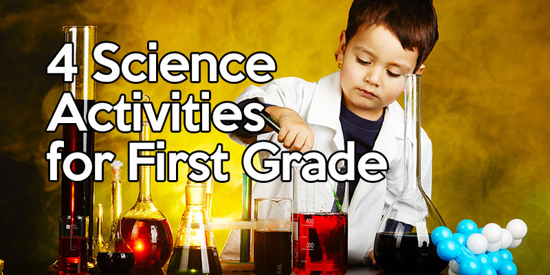 4 Science Activities For First Grade The Teachers Digest