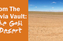 From_the_trivia_vault_the_gobi_desert